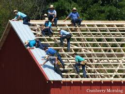 amish barn raising waiting for another sheet of metal roofing amish h99