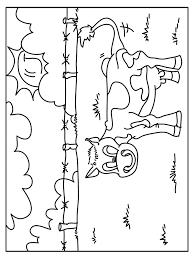 Kleurplaat Koe In De Wei Kleurplatennl