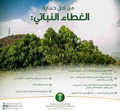 """وزارة البيئة والمياه والزراعة på Twitter: """"تعرّف على جهود الوزارة لتنمية  الغطاء النباتي الطبيعي.… """""""