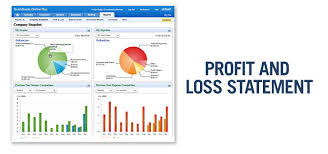 Proffit And Loss Profit And Loss Statement