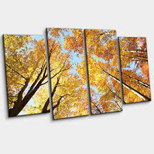>canopy of autumn gold yellow beech forest large 4 piece wall art  image is loading canopy of autumn gold amp yellow beech forest