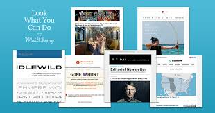 Music Newsletter Templates Html Newsletter Templates For Mailchimp Look What You Can Do