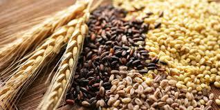 У Сватовому судитимуть громадянина, який заволодів зерном на 1,2 млн. гривень