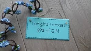 Gin Sign Friend Gift Wooden Plaque Funny Quote Alcohol Sign Drinking Quote Sign Funny Sign Humorous Wall Plaque
