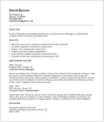 Resume Examples For Customer Service Resume Badak