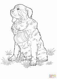 Kleurplaat Masker Mooi Hond Kleurplaten Nieuw Awesome Kleurplaat