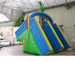Pool Slides For Your Above Ground Portable Pools Best Above
