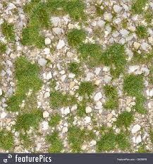 dirt grass texture seamless. Plants: Dirt Road With Grass. Seamless Tileable Texture. Grass Texture K