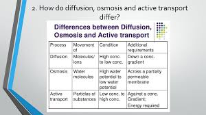 Venn Diagram Of Diffusion Osmosis And Active Transport Diffusion Osmosis And Active Transport Ppt Download