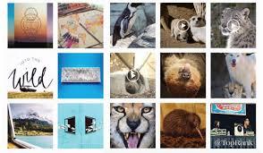 5 Elements of a Successful Instagram Marketing Strategy | Instagram  marketing strategy, Instagram marketing, Blog marketing