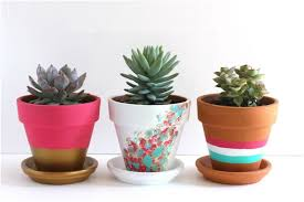 how to decorate your plain clay pot in amazing ways page