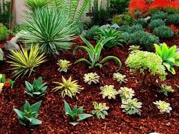 Small Picture American Landscape Design and Installation Drought