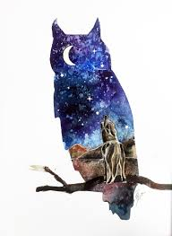 Image result for wolf and owl painting