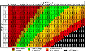 Obese Bmi Chart Bmi Chart Super Morbidly Obese Best Picture Of Chart