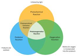 How To Complete A Venn Diagram Venn Diagram Examples