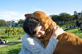 Image result for dogs love pictures