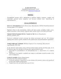 Professional Resume Insurance Executive Template Administr Peppapp