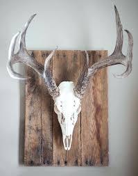 Antler Coat Racks Lovely Antler Wall Decor Rustic Deer Antler Coat Rack For Him Wall 69