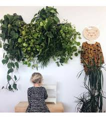 vertical garden with self watering wall