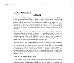 issue essay controversial issue essay
