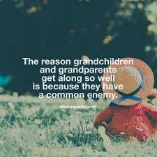 Funny Grandchildren Quotes Automobilistmetpit
