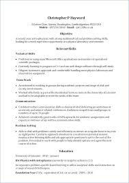 Skill Set Resume Template Resume Example