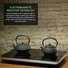 double induction countertop burner
