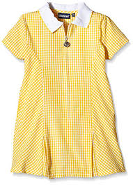 Blue Max Banner Girls Avon Checkered Short Sleeve Dress