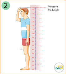 measure your height