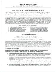 Executive Summary Resume Examples Enchanting Resume Personal Statement Examples Personal Summary Resume Examples