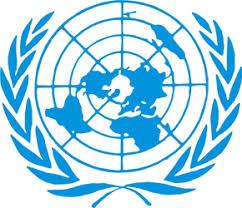 Организация Объединенных Наций ООН Организация Объединенных Наций