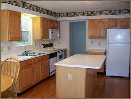 Refacing Oak Kitchen Cabinets Kitchen Cabinets Perfect Kitchen Cabinets Home Depot Kitchen