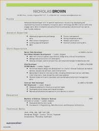 Professional Resume Writing Service Reviews Inspirational 32 Cool