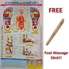 Reflexology Zones Thai Foot Massage Health Chart Poster Free Massage Stick Tool