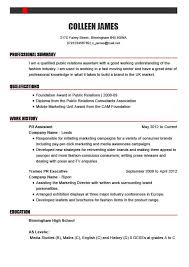 How To Write A Good Cv Successful Cv Examples By Industry And Profession My