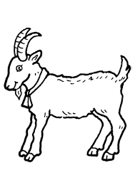Small Picture Cute Goat Coloring Sheets for Kids Coloring Pages