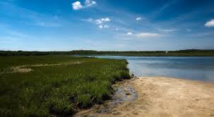 Scallop Pond Preserve