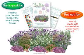 Small Picture Bee Bistro a Free Garden Design PlantPlots