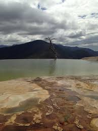 from the world a collection of essays tolerance and poverty hierva el agua in the oaxacan hills