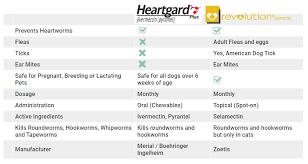 Heartgard Plus Vs Revolution A Complete Comparison
