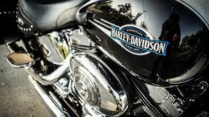 harley davidson logo hd wallpaper