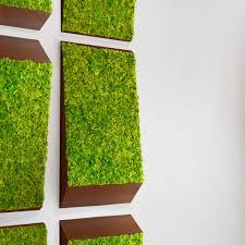 Greenmood Design Preserved Green Wall Modular Panel In Lichen Natural