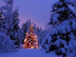 Winter Christmas Scene Wallpapers ...