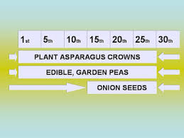 Planting Dates Chart Piedmont Gardener January Vegetable Planting Dates For