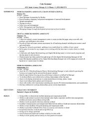 Merchandiser Job Description For Resume Best Of Merchandising Assistant Resume Samples Velvet Jobs