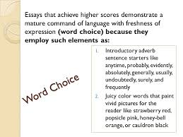 important essay writing elements introduction review the 5 word