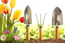 essential gardening tools. Wonderful Gardening A Spaid Trowel And Hand Cultivator Stuck Up Right In Garden Soil Throughout Essential Gardening Tools N