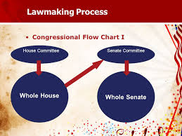 Law Making Flow Chart United States Constitution Exam Preparation How A Bill