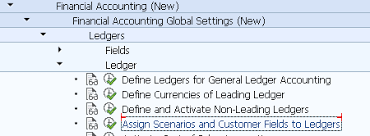 Check Ledgers Assign Scenarios And Customer Fields To Ledgers S_eln_06000019