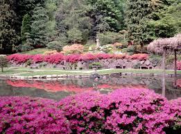 Japanese Garden Landscaping Japan Japanese Garden